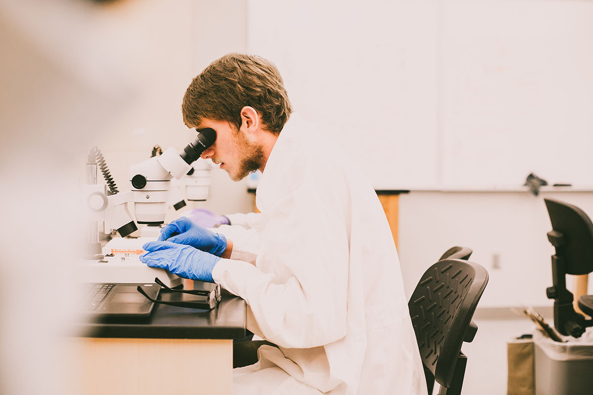 Student working in biology lab