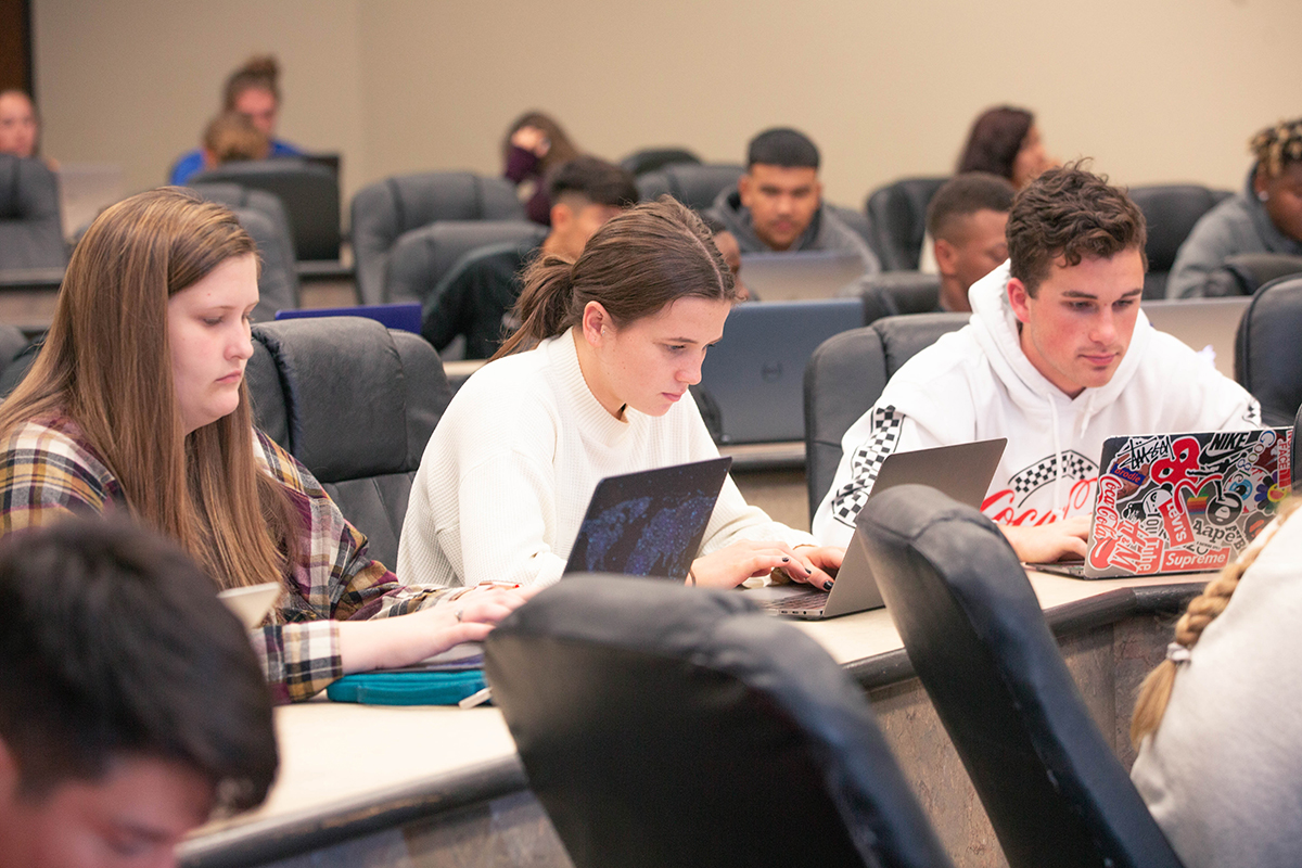 students working in class on computers